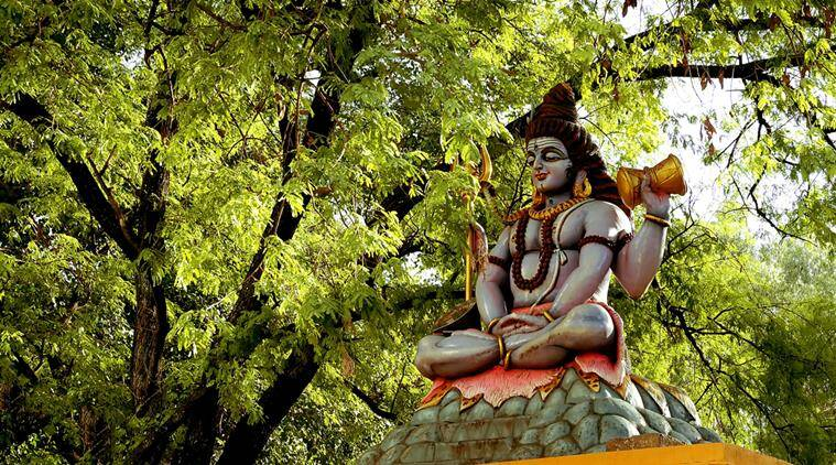 shiva statue, shiva statue gujarat, tapi district, new shiva statue in gujarat, gujarat news, indian express news