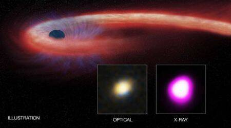 Black hole devouring star for a decade detected