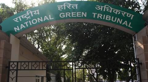 Action plan on climate change awaiting final review, Delhi govt tells NGT