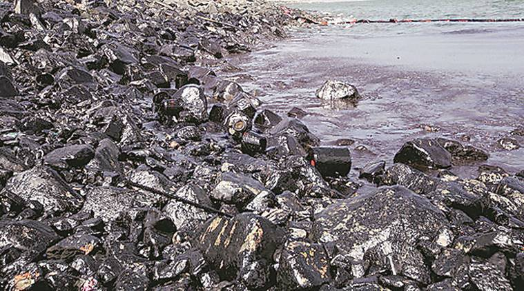 chennai oil spill, chennai ship collide, chennai ship collision, Kamarajar port, Ennore oil spill, indian express news, india news