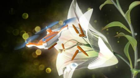 Japanese scientists develop sticky insect-sized drones to help pollinate crops