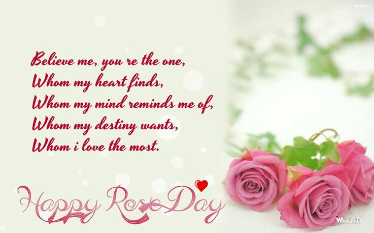 happy rose day 2017 wishes greetings images wallpaper