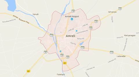 Gujarat: Lion dies after hit by train engine in Amreli