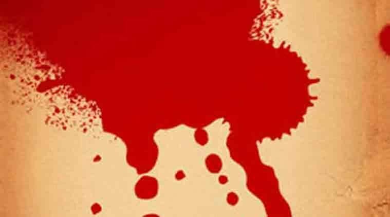 Delhi, murder, delhi murder, delhi cricket bat murder, delhi news, india news, indian express news