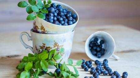 benefits of blueberries, cervical cancer, health study, Indian express, skin care blueberry, Indian express news