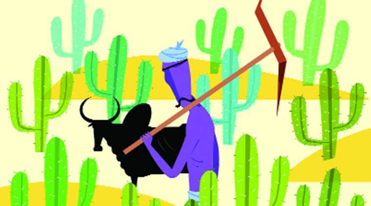 farmers, farmers deaths, farmers loan waivers, tamil nadu farmers, tamil nadu farmers deaths, cauvery delta, farmers loan waivers, farmers debt, monsoon, punjab, karnataka, telengana, andhra pradesh, demonetisation, indian express columns