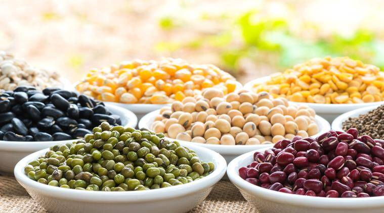 legumes, chickpeas, beans, lentils, diabetes, diabetes health, diabetes food, cut diabetes risk, diabetes reduction, diabetes food, indian express, indian express news