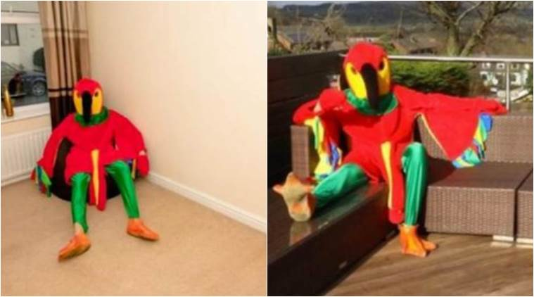 man selling house as parrot, parrot selling house, man dressed as pilot selling house, man sells a house as parrot, indian express, indian express news