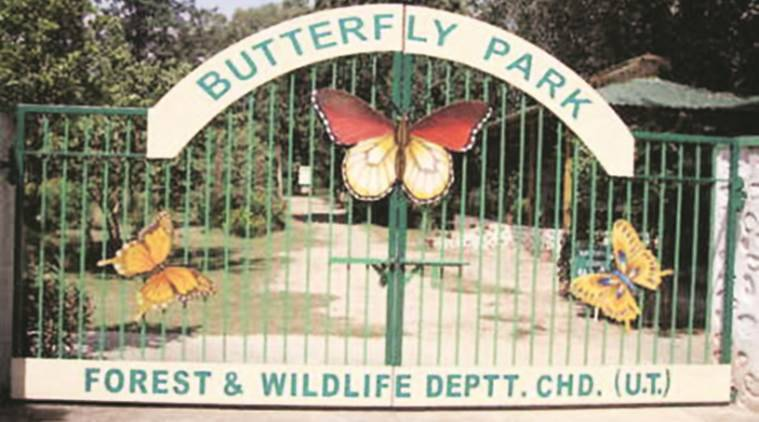 butterfly park,  butterfly park delhi, butterfly, latest news, latest india news