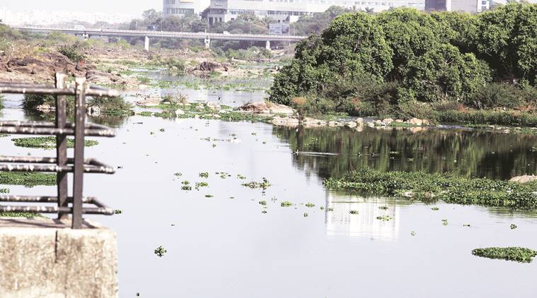 Rivers in Pune, Pun's dying rivers, Mula and Mutha rivers. Mutha River, Mula River, pollution in rivers of India, India rivers news, Pollution in Indian rivers, polluting India rivers, Indian rivers story, Latest news, pollution of Indian rivers story, national news, Pollution in India