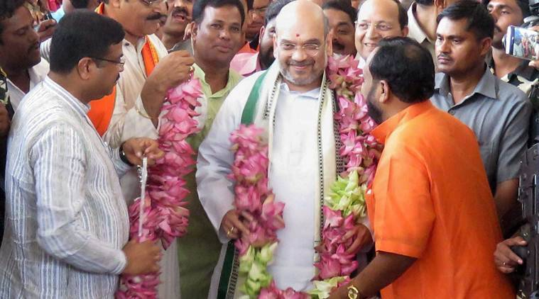 Odisha, BJP Odisha, Odisha bypolls, Bhubaneswar bypolls, Amit Shah, BJP national executive meeting, Amit Shah Odisha, Shah BJP, Odisha by-elections, India news, Indian Express