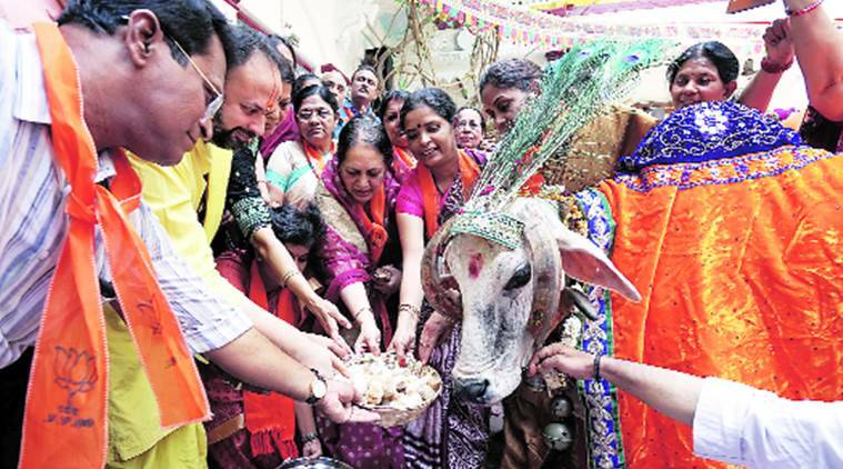 Congress Cow Puja Rajkot, Congress, Gau Puja, Indian Express News