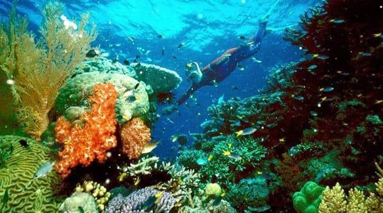 cyclone hit Australia, cyclone hits great Barrier reef, Australia news, International news, Latest news, world news