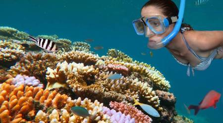 Australia's Great Barrier Reef in danger; this might be your last chance to see it