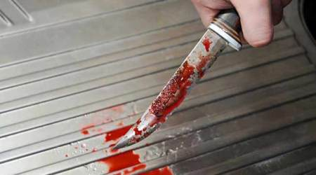 Pakistan honour killing: Stepbrother hacks 19-yr-old girl to death for relationship with another man