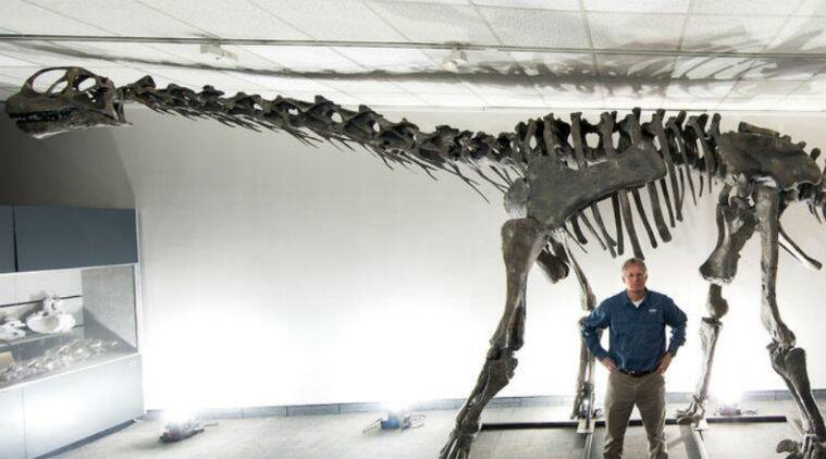 About 45 years of reconstruction yield newly-named Moabosaurus