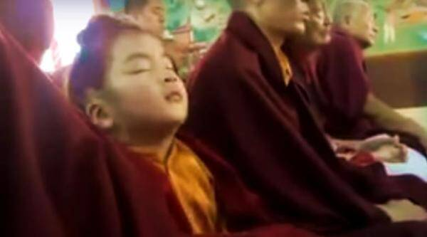 funny videos, funny monk videos, little monks falling to sleep videos, indian express, indian express news