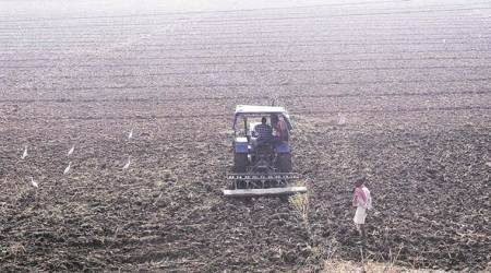 Farm policy: Dis-ease of doing the business ofagriculture