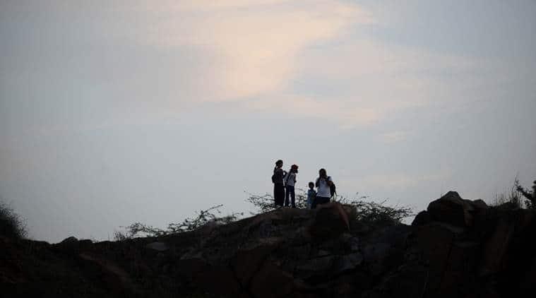 aravalli, aravalli range, Save Aravalli,Punjab Land Preservation Act 1990, Haryana Forest Department, Aravalli hills, Kikar tree, Mesquite tree, india news, latest news