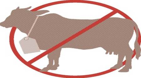 Rajasthan: Three women held for 'storing 40 kg beef'