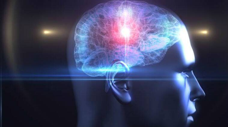 lifestyle, lifestyle and health, human brain, brain development, growth of brain, maturity of brain, brain and humans, new research on human brain, brain study, indian express, indian express news