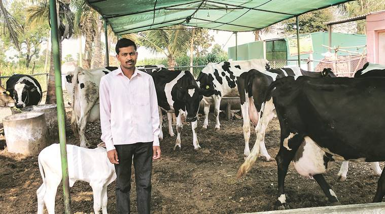 Milk price, Milk price hike, milk rate hike, maharashtra dairy, maharashtra milk price, fadnavis, indian express news, india news, explained