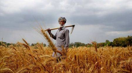 farmers protest, punjab farmers, punjab protests, loan waiver, bjp, sad, punjab news, india news, latest news, indian express
