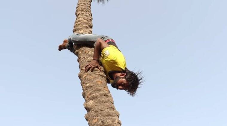 motivational videos, man climbing trees upside down video, ways to climb a tree, indian express, indian express news