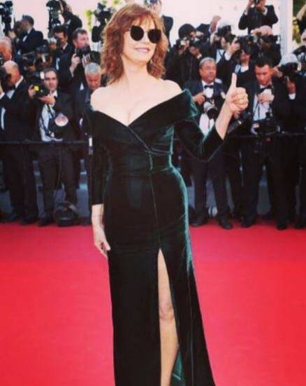 Cannes, cannes 2017, red carpet looks at cannes, who wore what at cannes, indian express, indian express news