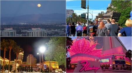 Sleepless in sin city: Fun, frolic and gaming
