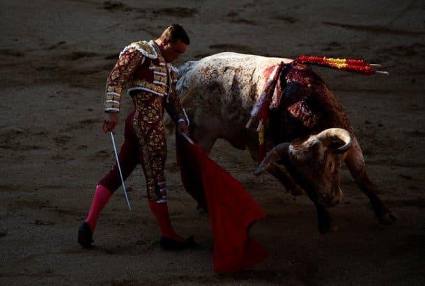 San Isidro bullfighting, San Isidro bullfighting festival, bullfighting fest, spain bullfighting, spain bullfighting festival, madrid bullfighting, bullfighting festival, photos