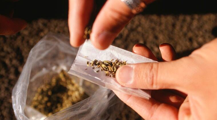 ganja news, ganja seized news, india news, indian express news