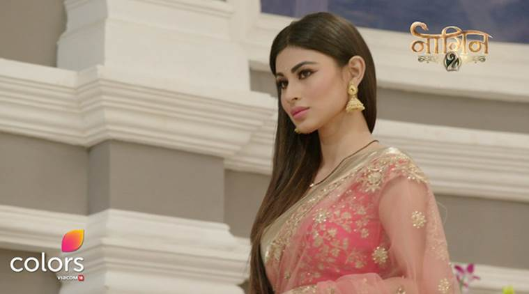 Naagin, Naagin TV summary, Naagin summary, naagin , mouni roy