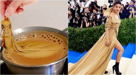 Priyanka Chopra selects her favourite memes from Met Gala 2017