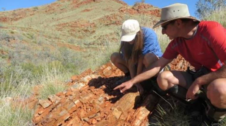 evidence of life on land, microbial life on land, australian research, australian researcher, research on life on land, existence of life on land, university of new south wales, unsw, unsw research, tech news, geology news, science news, latest news, indian express