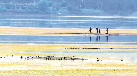 V-C asks PU faculty members to share innovative ideas  to help save Sukhna Lake