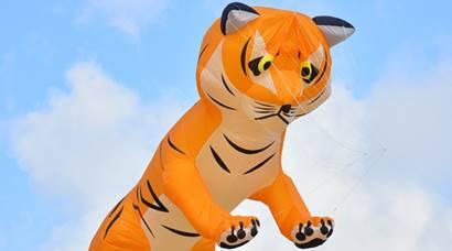 Bekal kite festival: When crouching tiger soared above Pallikkare