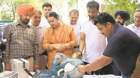 Chandigarh: Mayor inaugurates anti-rabies vaccination camp at Sector 18