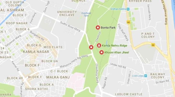 delhi man kills wife, north delhi murder, delhi murder, man kills wife delhi, delhi news, indian express news