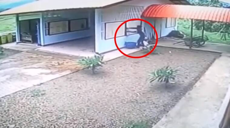 funny videos, idiotic burglar, funny thief videos, Indian express, Indian express news