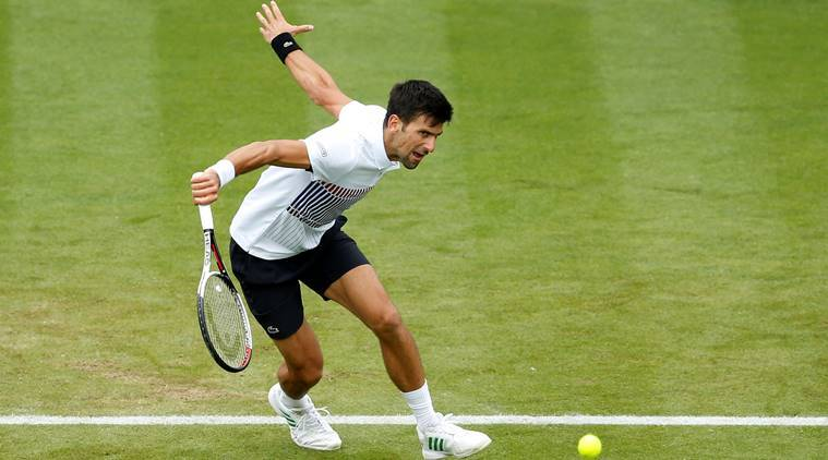 wimbledon 2017, novak djokovic, andy murray, murray vs djokovic