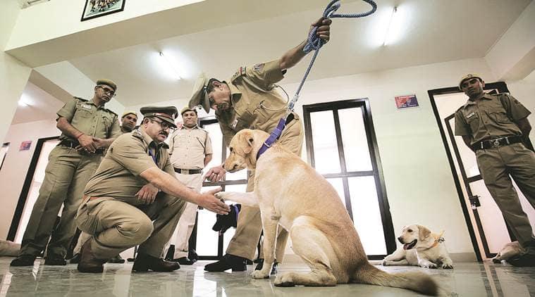 Delhi Police, dog squad, police dog, police dog squad, latest india news, indian express