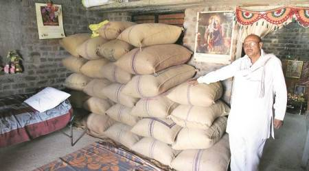Crash in prices of farm items: Retail inflation at low of 2.18 per cent in May on decline in food prices