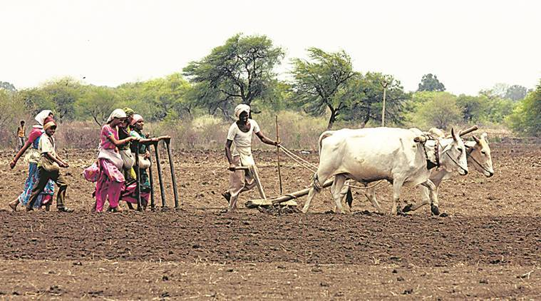 farm loan, farmer loan, RBI, farm credit, what is farm loan, farmer loan waiver, loan waiver, reserve bank of india, indian express news, explained, india news