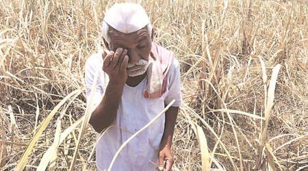 Farmers have got nothing in return for ensuring national foodsecurity