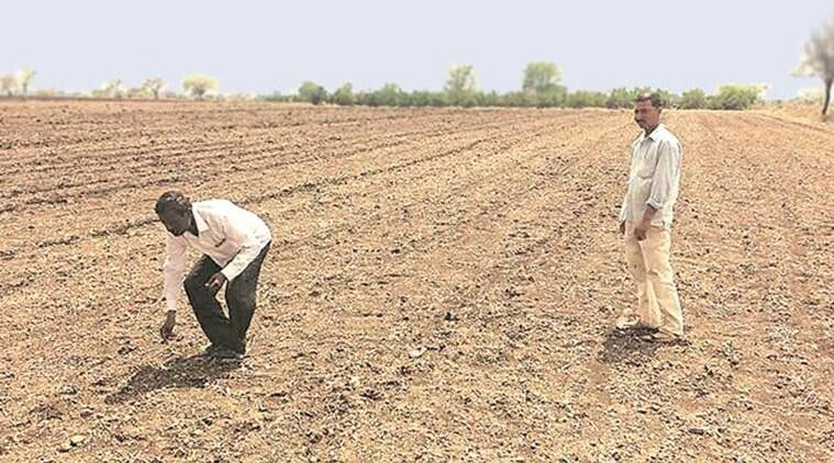 Farmer, Farmer crisis, Cotton, Minimum Support Price, Kharif crops, BT Cotton, Pulses, Agricultural ministry, Indian Express