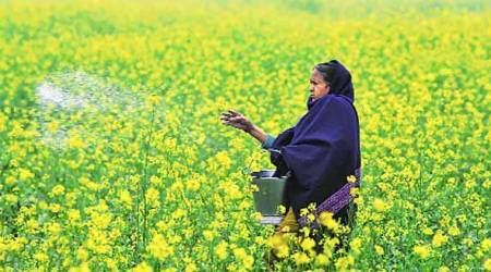 Goods and Service Tax: A bad deal, say fertiliser makers
