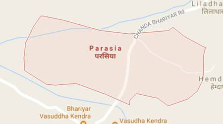 Brothers die after mob assault in Biharvillage