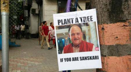 These green memes on Kolkata trees have us LOL-ing