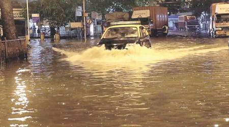 In just 2 days of rain, Mumbai records over 50 complaints of falling trees, branches